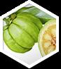 Garcinia  ingredient 1